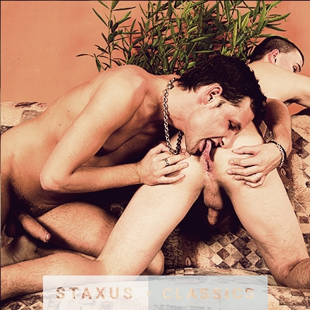Staxus Classic: Bareback Cock Riders - Scene 5 - Remastered in HD