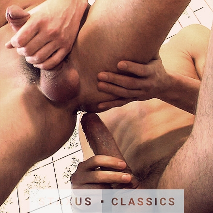 Staxus Classic: Frat Boy Fuckfest Scene 3 - Remastered in HD
